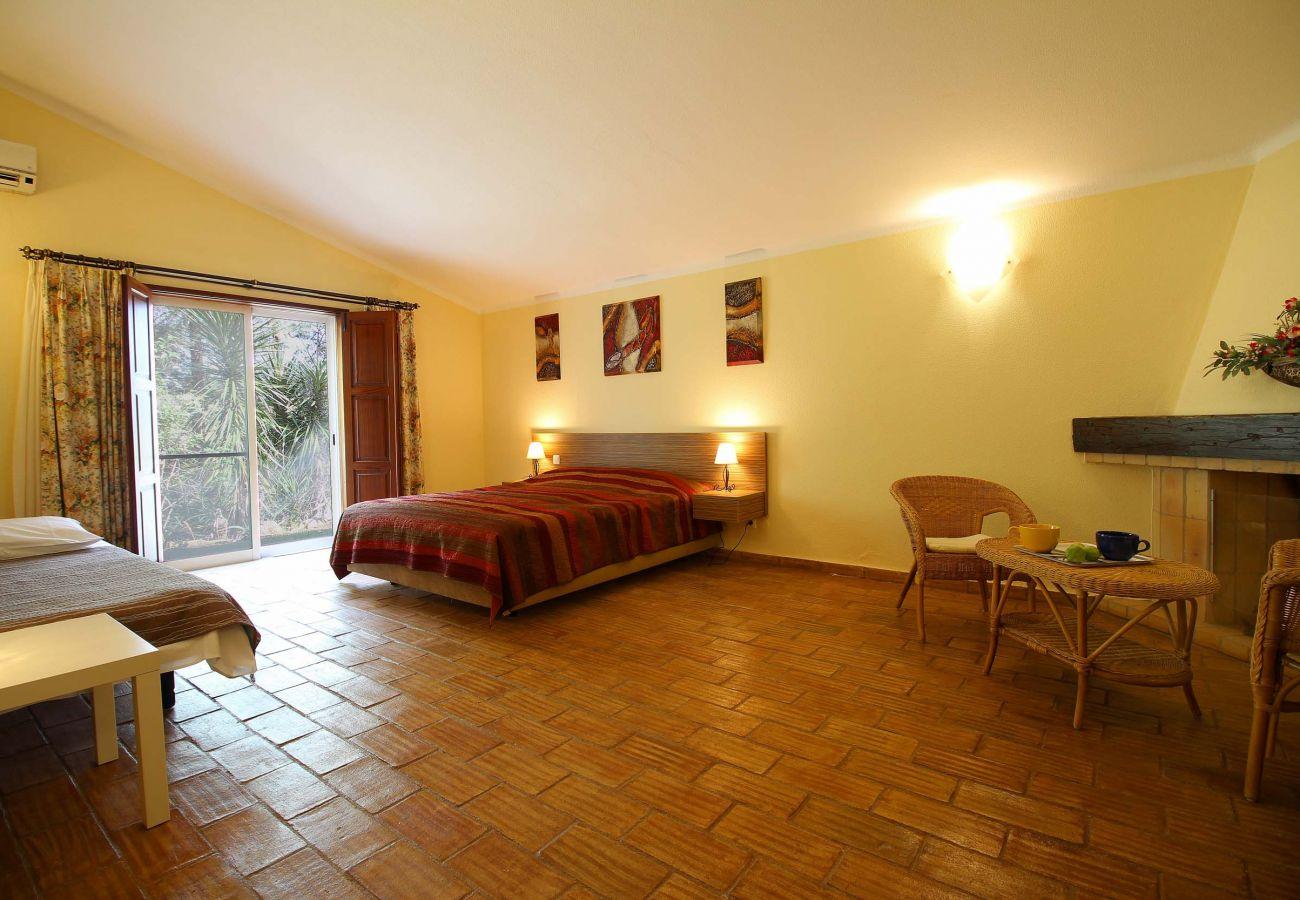 Villa in Estombar - Magnificent villa in the countryside, private pool, garden and sauna